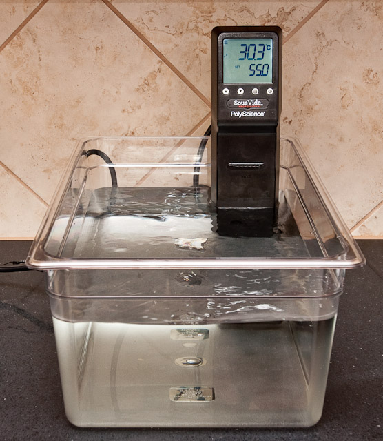 Sous Vide Cooking At Home Setup Guide Sous Vide
