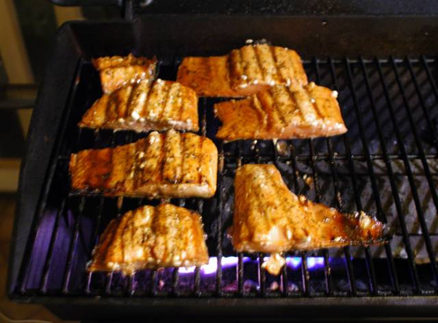 How Long To Cook Frozen Salmon On George Foreman Grill